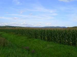 Landschaft-3DSCI0406