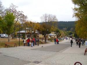 DSCI0305-Der-Ort-Tittisee-12-kl